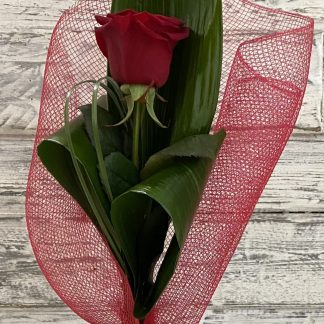 As single rose displayed in a tall black vase. Created using a mix of foliage, red wrap & finished with a bow.