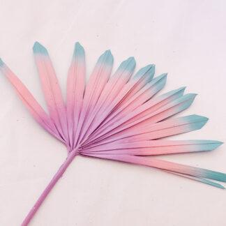 Decorative Palms